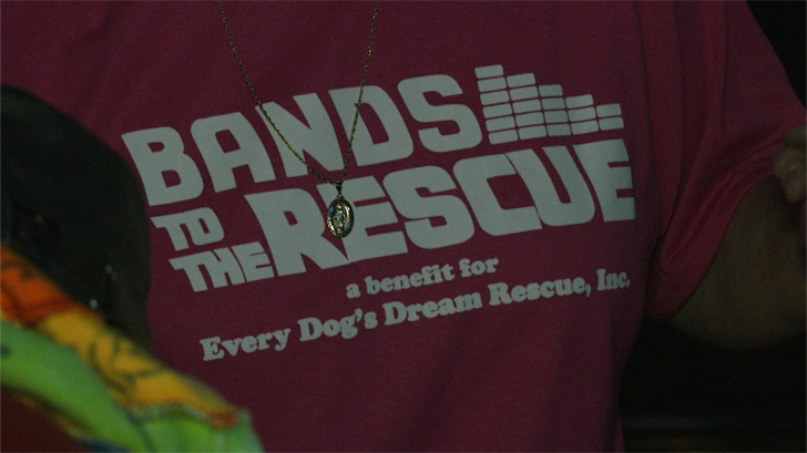 bands to the rescue raises funds for every dog s dream fox 40